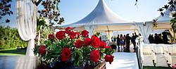 Mit einem Hochzeitskredit die Traumhochzeit finanzieren? [© taniac - Fotolia.com]